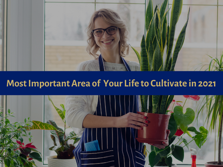 Most Important Area of Your Life to Cultivate in 2021