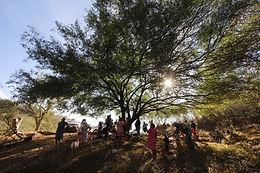 La Narcopolítica se institucionalizó en la Tarahumara