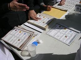 Criminal Capture: The Other Electoral Phenomenon