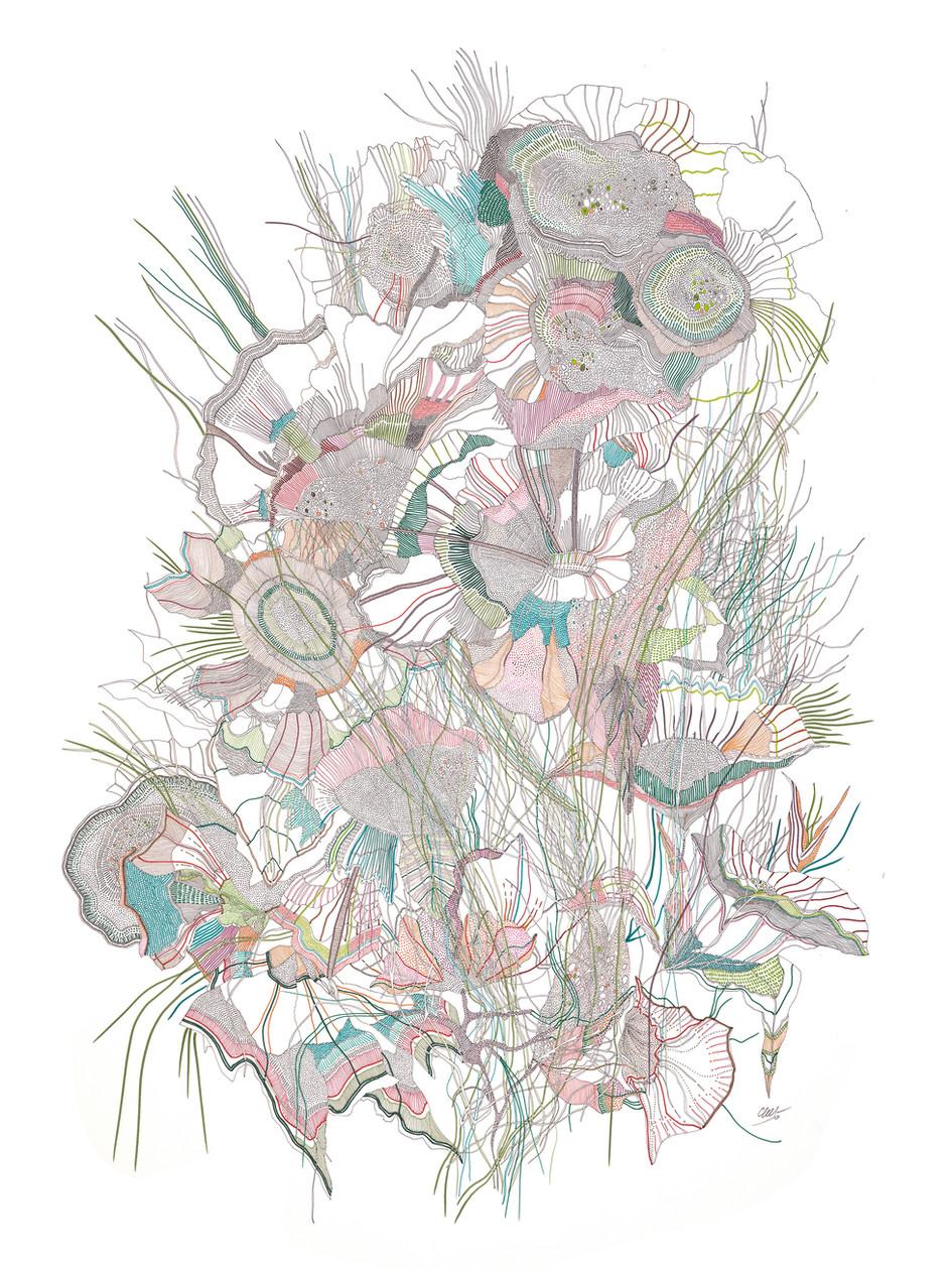 Bouquet final // 120 x 80 cm