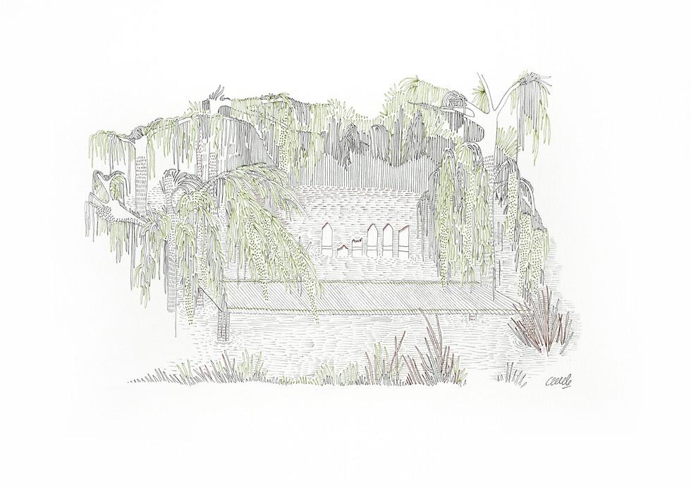 Van Winkle Rd, New Iberia - Etang des voisins // 42 x 29,7 cm