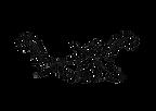 DE Logo Transparent Gondola only.png
