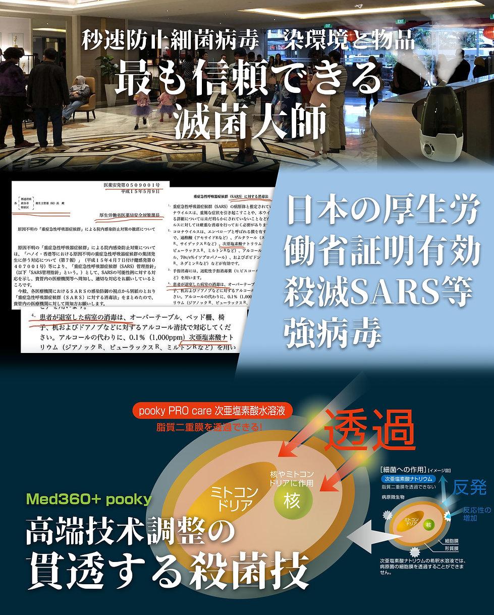 Website banner layout-2.jpg