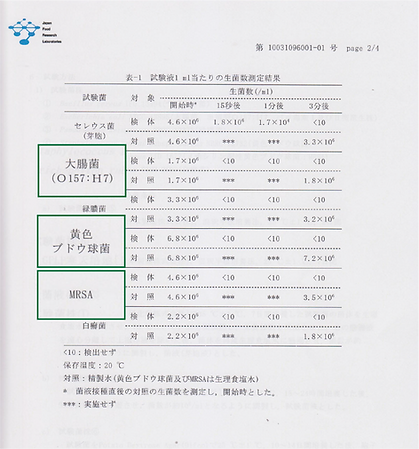 report2.png