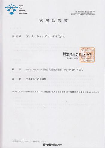 report5.jpg