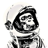 cosmo monkey.png