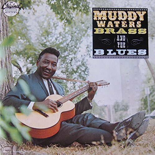 Muddy Waters - Brass and the Blues