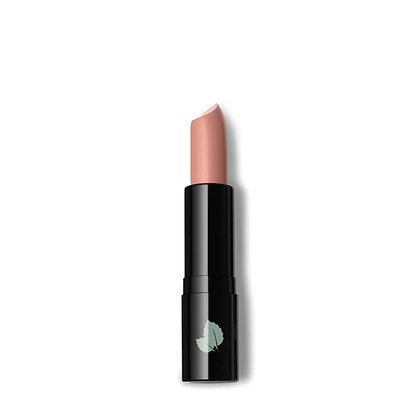 Mint Makeup - Luxury Matte Lipstick
