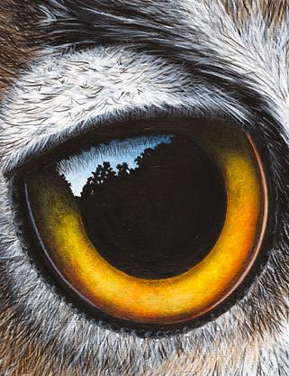 Owl Painting by Ayse Rifat Wildlife Arti