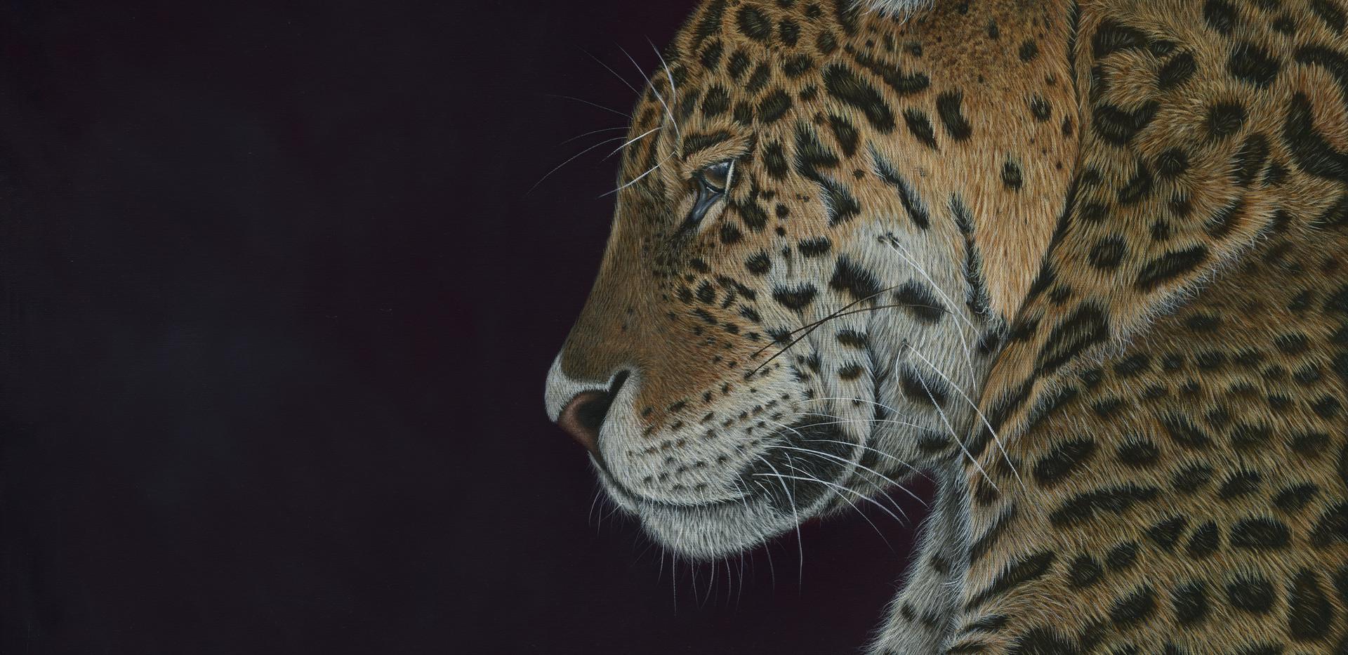 JAGUAR Painting - By Ayse Rifat Wildlife Artist