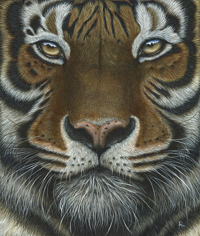 Tiger - Oil Painting - Animal art - Explorers Against Extinction