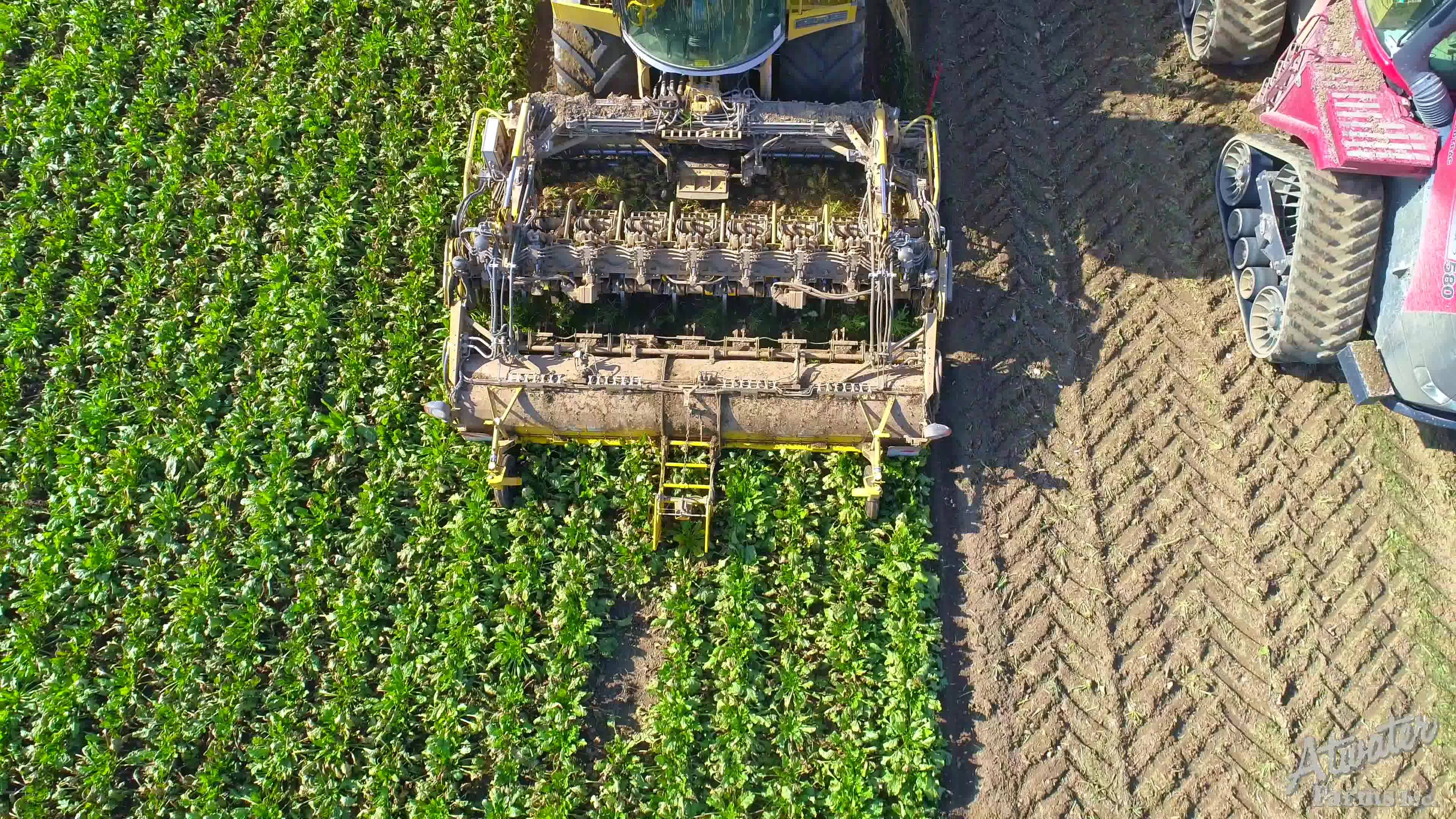 2018 Sugar Beet Harvest Video