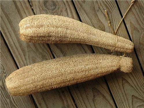 Luffa Gourd