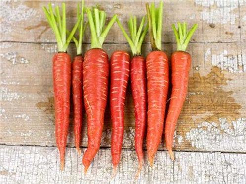 Atomic Carrot