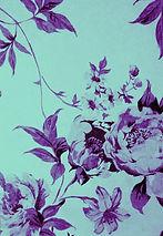 Dimitras Garden Pension Holidays in Parga  Rooms in Parga Apartments in Parga Greece Πανσιόν Διαμερίσματα στην Πάργα Ενοικιαζόμενα Δωμάτια στην Πάργα Διακοπές στην Πάργα