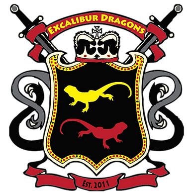 Excalibur Dragons Logo