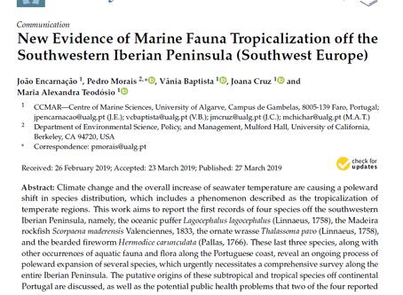 Artigo publicado sobre a tropicalização da costa sul de Portugal