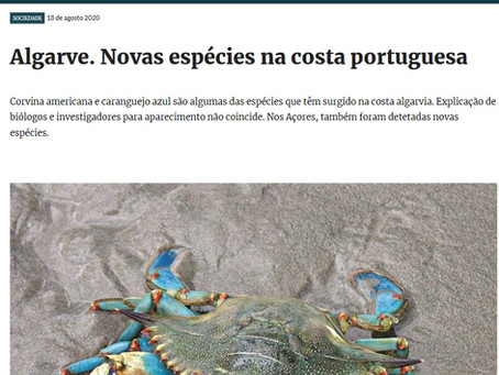 Notícia no Jornal SOL sobre espécies invasoras