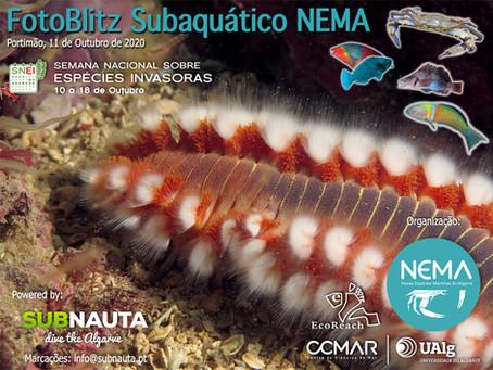 FotoBlitz Subaquáticos NEMA 2020