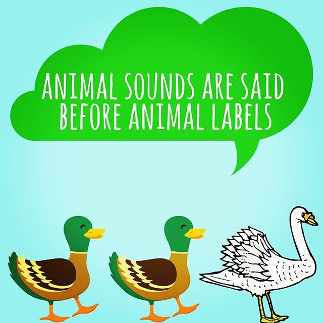 Pop of Knowledge: Animal Sounds!