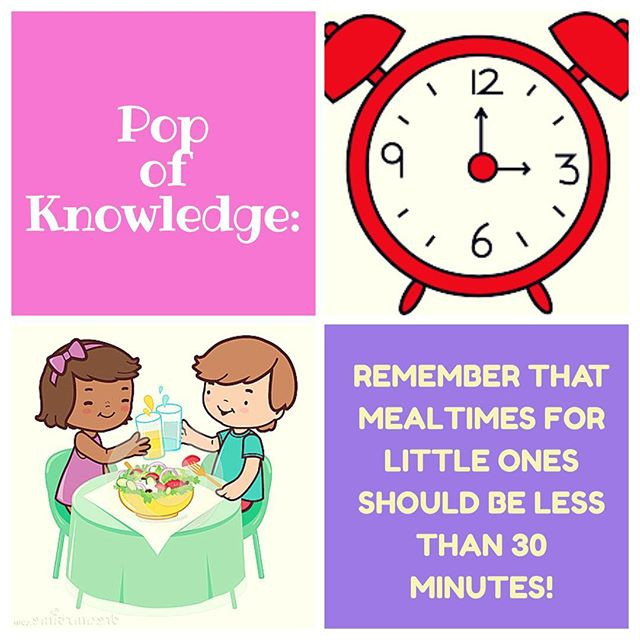 Pop of Knowledge: Mealtimes!