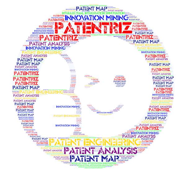 PATENTRIZ® PATENT VALUE INNOVATION_ BASIC WORKSHOP
