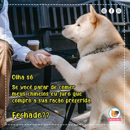 Fechado.png