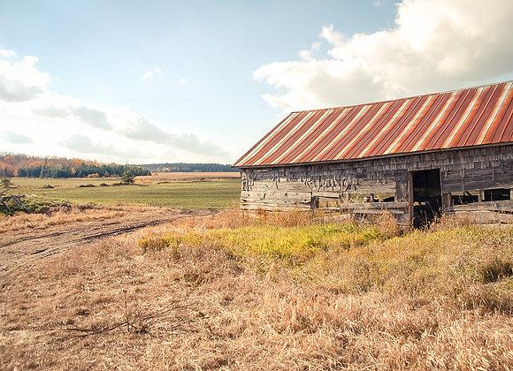 Dufferin County Old Barn II (series)
