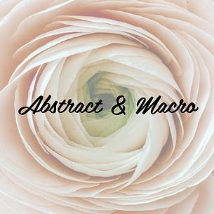 Abstract & Macro.png