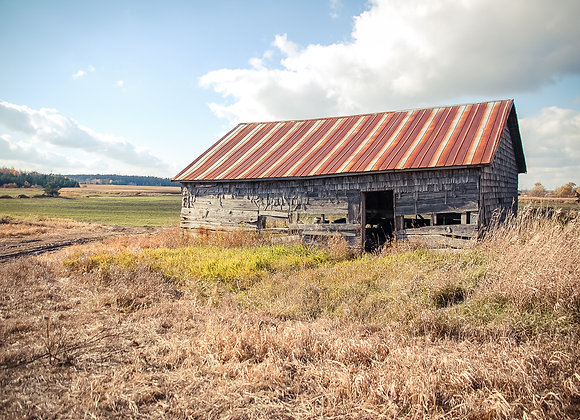Dufferin County Old Barn (series)