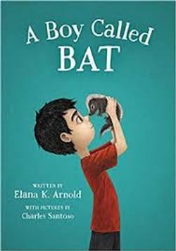 boy bat