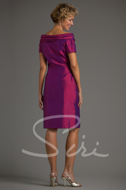 Siri Babe Paley Dress
