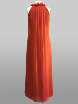 Siri Celestial Gown