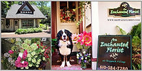 An Enchanted Florist in Skippack, right behind PAge Six...it's haute