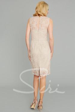 Siri Kate Dress