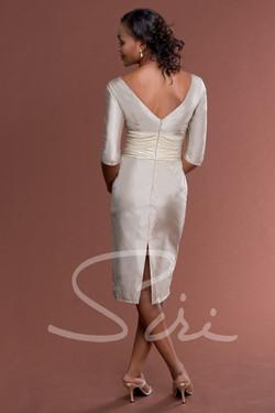Siri  Zeta Jones Dress