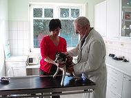 Tierarztpraxis Mengen