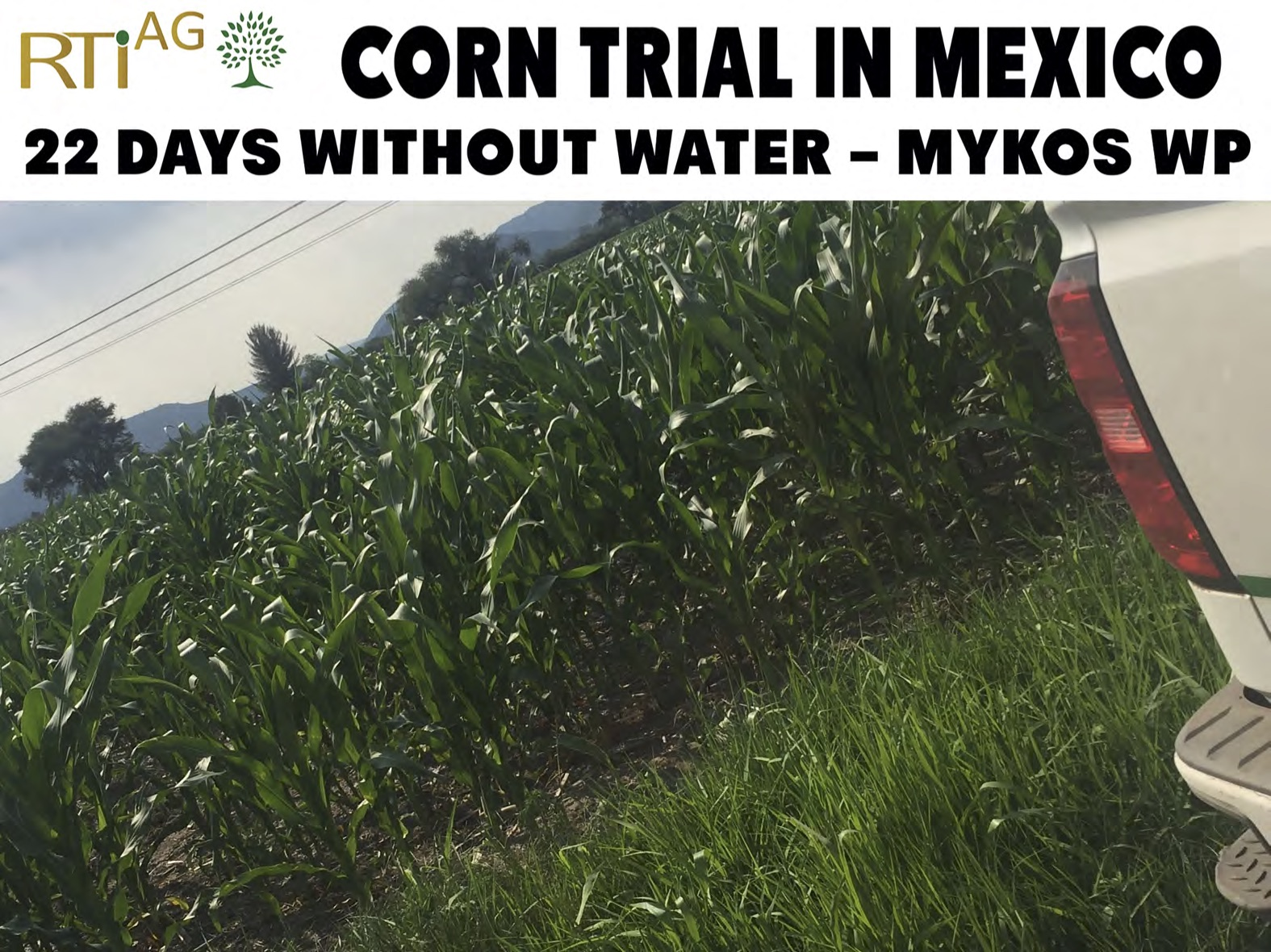 Mexico-Trials 6