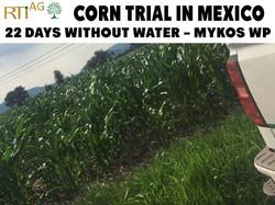 Mexico-Trials 6