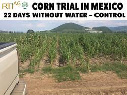 Mexico-Trials 5