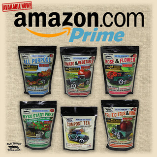 OTO on Amazon Prime!