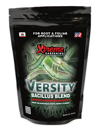 XG Versity Bag.png