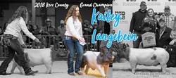 Kailey Website 4
