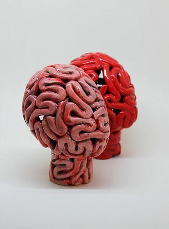 Total Brain Head