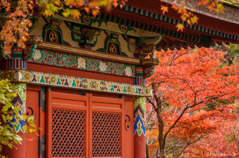 Bishamon-do Autumn