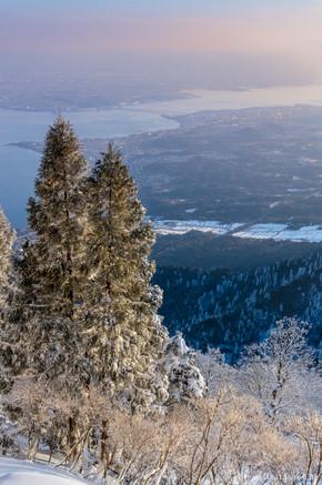 Horai Winter