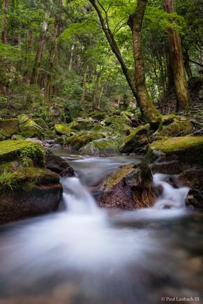 Hieizan Stream