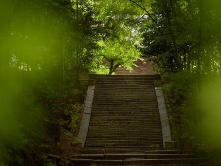 Homyoin Summer Stairs