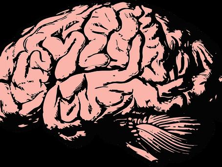 Neuroscience, la preuve que vous devriez écouter le podcast VO BOSS