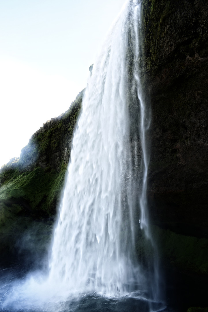 naturaleza 1.jpg